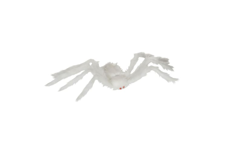 Bristol Novelty Hairy Fake Spider (White) (One Size)
