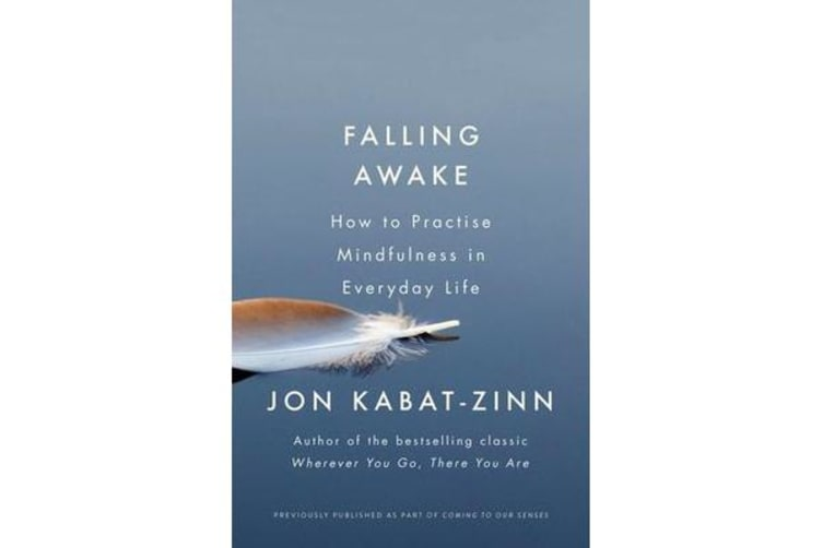 Falling Awake - How to Practice Mindfulness in Everyday Life