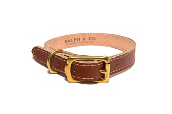 Ralph & Co Leather Dog Collar (Tan)