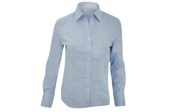 Brook Taverner Ladies/Womens Palena Long Sleeve Blouse (Blue)
