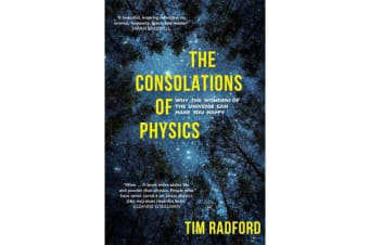 The Consolations of Physics - Why the Wonders of the Universe Can Make You Happy