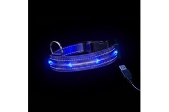 Loomo LED Dog Collar Blue - M