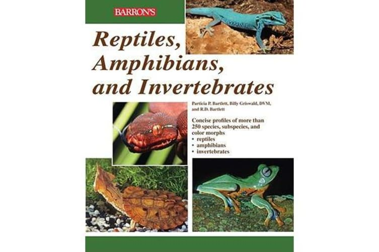 Reptiles, Amphibians and Invertebrates