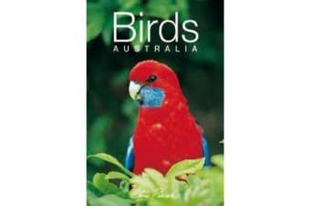 Discovering Australian Birds Gift Book