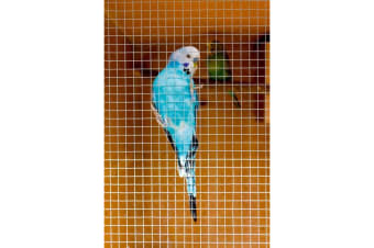 Ambassador Cage & Aviary Welded Panel (Silver)