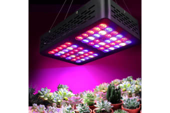 300W LED Grow Light Spectrum Reflector Indoor Hydroponic System