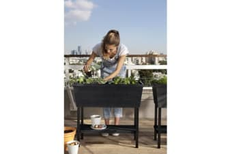 Keter Urban Bloomer Garden Bed Planter