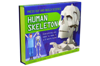Press Out And Build - Human Skeleton
