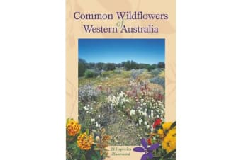 Common Wildflowers of Western Australia - 215 Species Illustrated