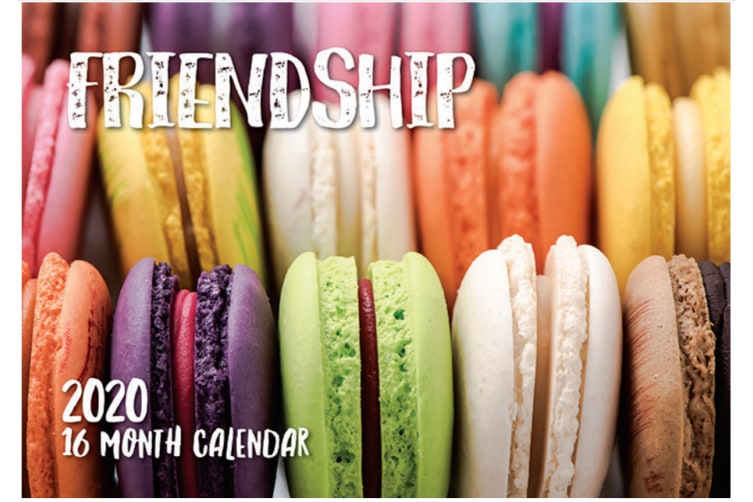 Friendship - 2020 Rectangle Wall Calendar 16 Months by Biscay (A)