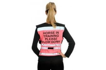 Equisafety Horse In Training Please Slow Down Air Waistcoat (Pink)