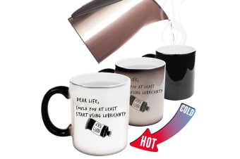 123T Funny Colour Changing Mugs - Dear Life Could You At Least Lubricant