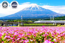 JAPAN: 12 Day Rail Package Including Flights for Two