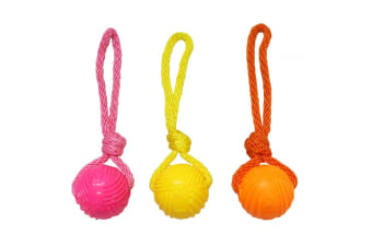 Armitage Good Boy Pets Glow In The Dark Ball On Rope Tug Toy (May Vary)