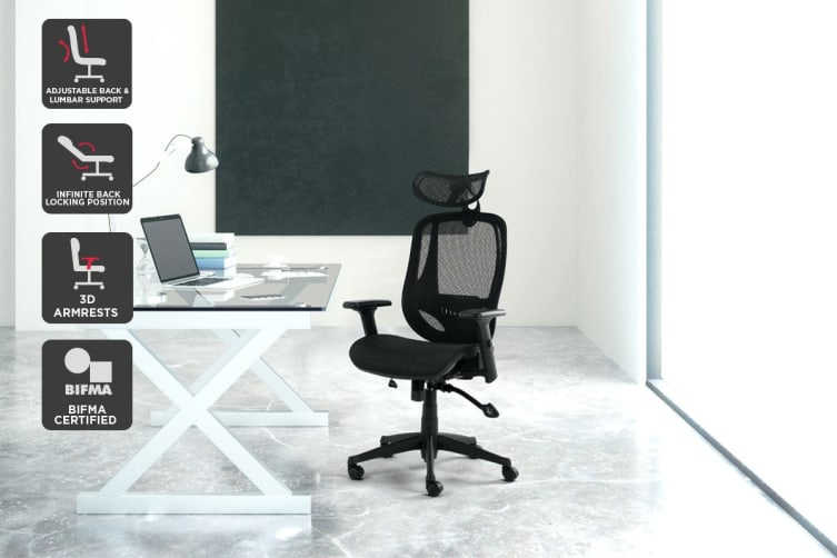 Ergolux EZ9 Ergonomic Mesh Office Chair