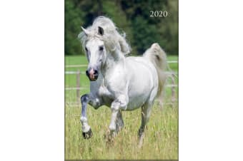 Horses - 2020 Diary Planner A5 Padded Cover by The Gifted Stationery