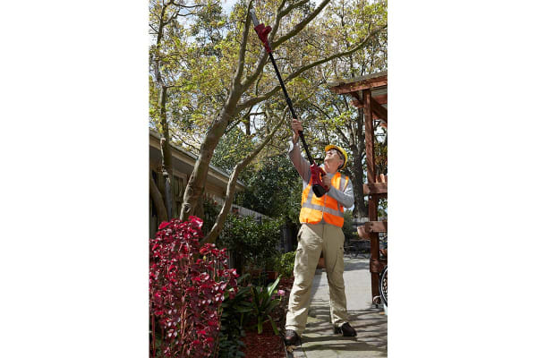 Lenoxx 18V Cordless Tree Lopper