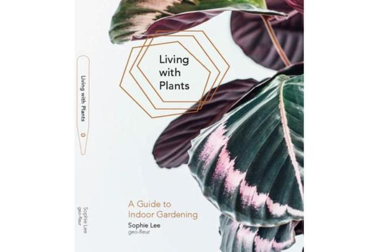 Living With Plants - A Guide To Indoor Gardening