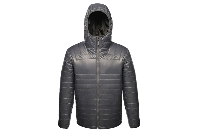 Regatta X-Pro Mens Icefall II Down-Touch Padded Jacket (Seal Grey) (Large)