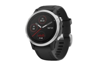 Garmin Fenix 6S (Silver and Black)