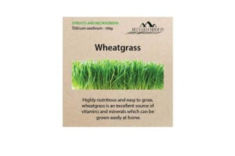 Perth Hills Veggie Co Microgreen Seeds Wheatgrass