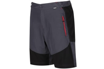 Regatta Mens Sungari Shorts (Seal Grey/Black) (32in)