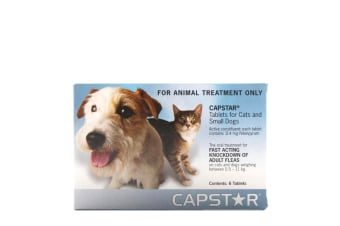 Capstar for Dogs & Cats 0.5-11 kgs - 6 Pack (1 Box) - Blue - Flea Control Tablet