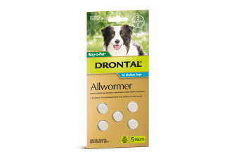 Drontal All Wormer Tablets for Medium Dogs - 10 kgs Tablets - 5 pack (Bayer)