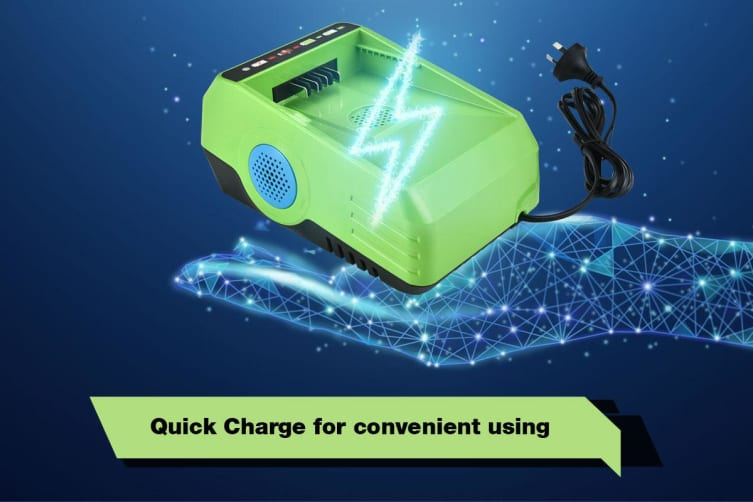 Neovolta 60V LITHIUM-ION Rechargeable Battery Charger Fast Charging