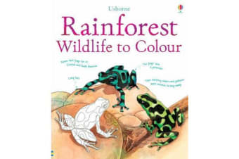 Rainforest to Colour