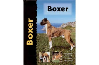 Interpet Limited Boxer Dog Breed Book (Multicoloured)