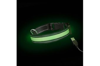 Loomo Moonshine LED Dog Collar Green - L