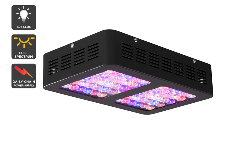 Certa 300W LED Grow Light