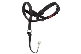 The Company Of Animals HALTI Headcollar (Black)