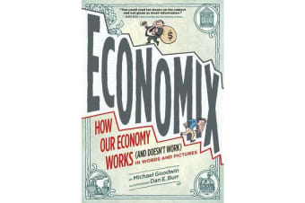 Economix - How and Why Our Economy Works (and Doesn't Work), in Words and Pictures