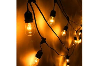 20m Festoon String Light