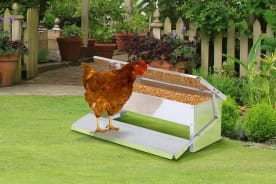 Outdoor Auto Chicken Feeder