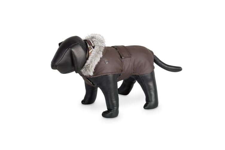 Nobby Marian Waterproof Hooded Dog Coat (Brown) (44cm)