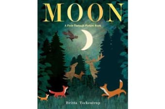 Moon - A Peek-Through Picture Book