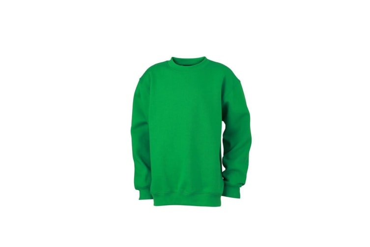 James and Nicholson Childrens/Kids Round Heavy Sweatshirt (Fern Green) (S)