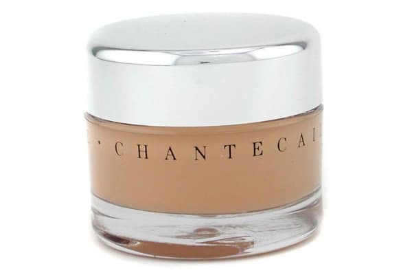 Chantecaille Future Skin Oil Free Gel Foundation - Wheat (30g/1oz)