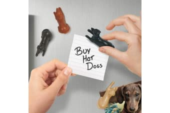 Magnetipups Interactive Dachshund Sausage Dog Fridge Magnets