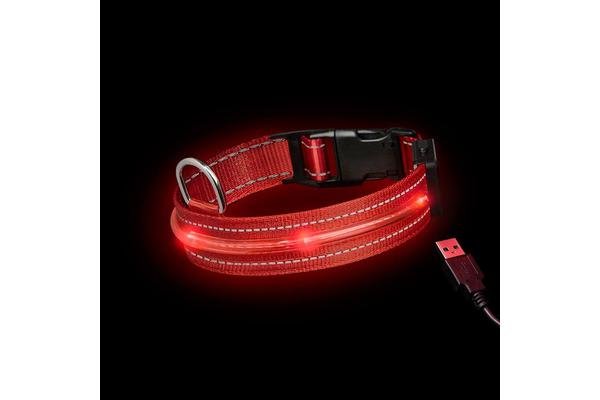 Loomo LED Dog Collar Red - S