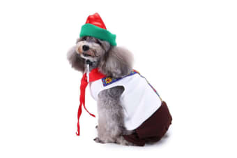 Dog Costumes Holiday Halloween Christmas Pet Clothes Soft Comfortable Dog Clothes S