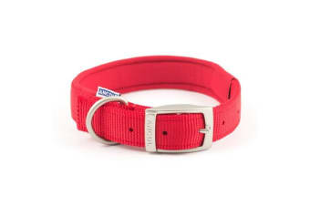 Ancol Padded Nylon Buckle Collar (Red) (39-48cm)