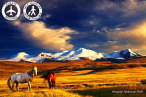 MONGOLIA: 16 Day Mongolia Tour Including Flights