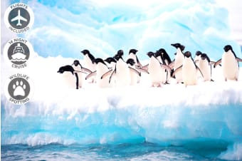ANTARCTICA: 18 Day South America & Antarctica Cruise Including Flights for Two