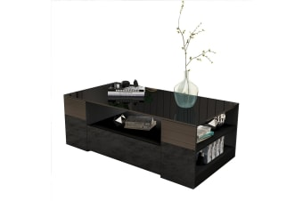 Modern Coffee Table 2 Drawer Storage Shelf Cabinet High Gloss Wood Furniture - Black