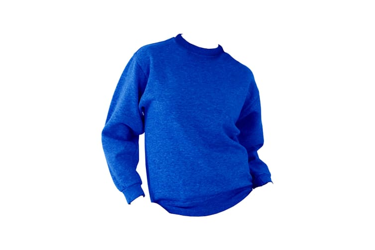 UCC 50/50 Mens Heavyweight Plain Set-In Sweatshirt Top (Royal) (XS)