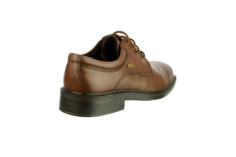 Cotswold Sudeley Mens Waterproof Shoe / Mens Shoes (Brown) (11 UK)